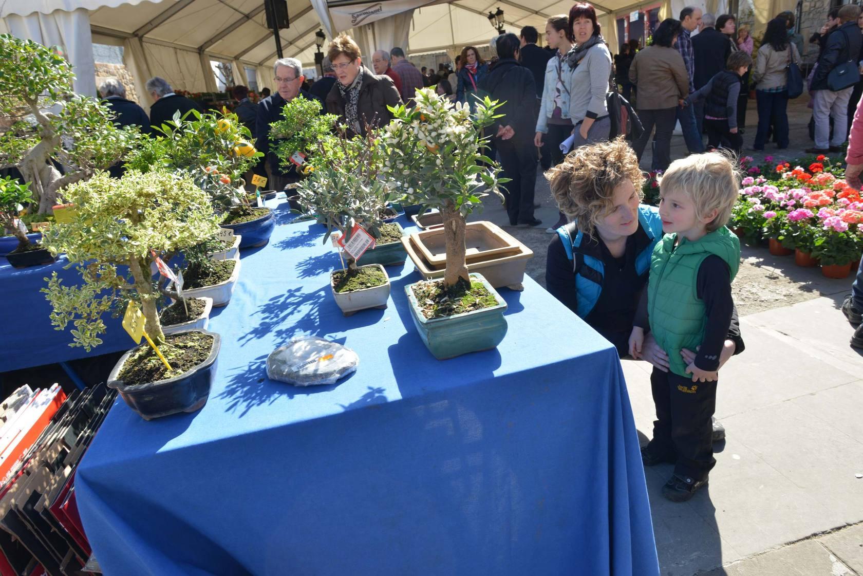 Feria de Flores y Plantas de Segura
